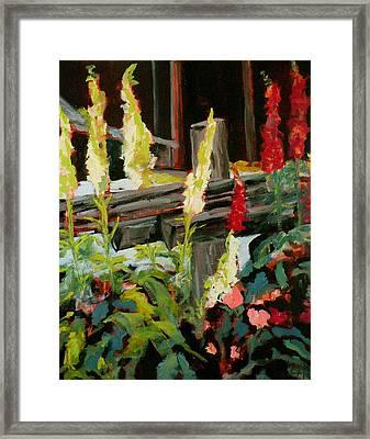 Foxgloves Framed Print by Carla Stein
