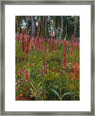 Foxgloves Framed Print by Georges Lacombe