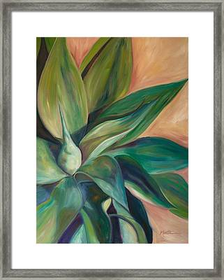 Foxtail Agave 4 Framed Print by Athena  Mantle