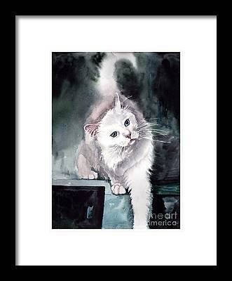 Persian Cat Framed Prints