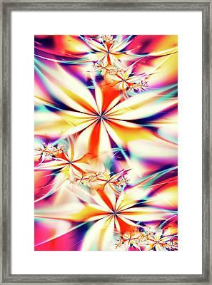 Fractal Art Xx Framed Print