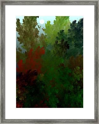 Fractal Landscape 11-21-09 Framed Print by David Lane