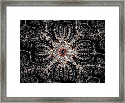 Fractal Spider Abstract Art Framed Print by Matthias Hauser