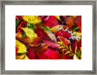 Framed Print featuring the photograph Fractalius Leaves by Shane Bechler