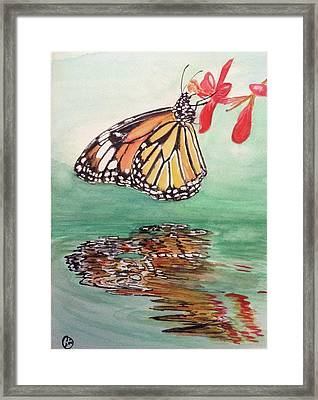 Fragile Reflection Framed Print