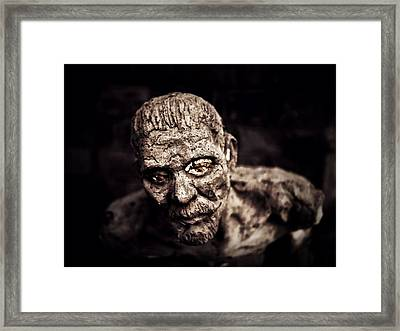 Fragility.. Framed Print