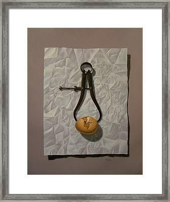 Fragility Framed Print by Timothy Jones