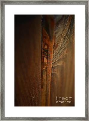 Fragment Of A Gate Framed Print by Eva Maria Nova