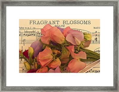 Fragrant Blossoms Framed Print