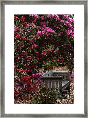 Fragrant Throne Framed Print by JoAnn SkyWatcher