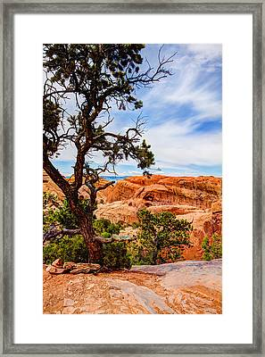 Framed Arch Framed Print by Chad Dutson