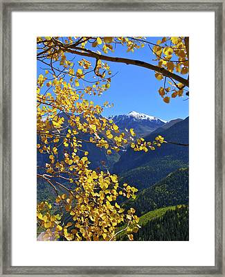 Framed By Fall Framed Print by Scott Mahon