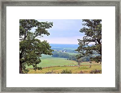 Framed By Oaks Framed Print