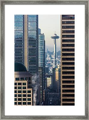Framed Needle Framed Print