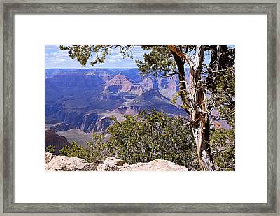 Framed View - Grand Canyon Framed Print by Larry Ricker