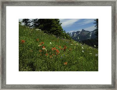 Framing The Tatoosh Framed Print
