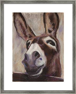 Francis Framed Print by Billie Colson