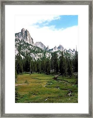 Frank Church Meadow Photograph Framed Print