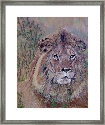 Framed Print featuring the painting Frank by Tom Roderick