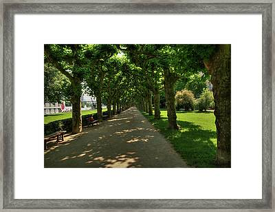Framed Print featuring the photograph Frankfurt - Sycamore Alley 001 by Lance Vaughn