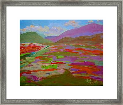 Franklin Blueberry Fields Framed Print