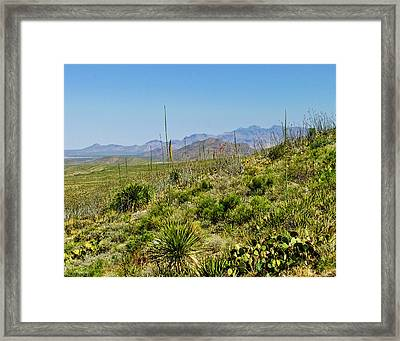 Franklin Mountains State Park Facing North Framed Print by Allen Sheffield