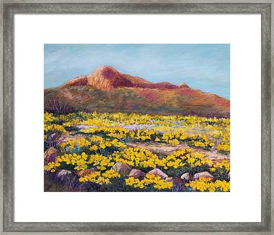 Franklin Poppies Framed Print by Candy Mayer