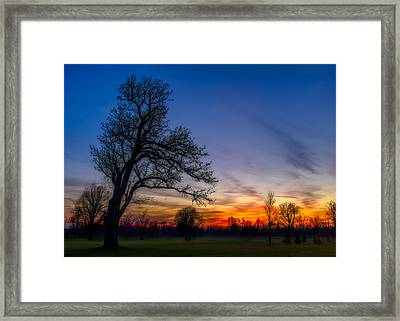 Frankly My Dear Framed Print by Chris Bordeleau