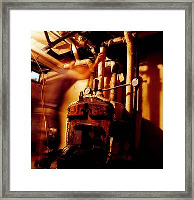 Frantic Framed Print by Tom Melo