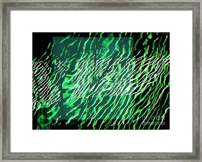 Frazzled Framed Print by Betsy Zimmerli