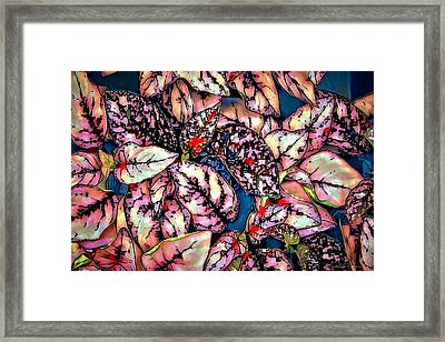 Framed Print featuring the digital art Freckle Face by Pennie  McCracken