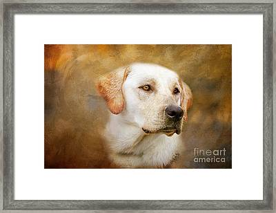 Fred Framed Print by Eleanor Abramson