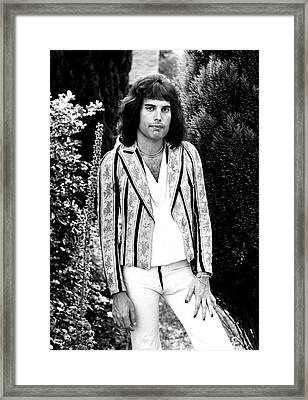 Freddie Mercury Of Queen 1975 Framed Print by Chris Walter