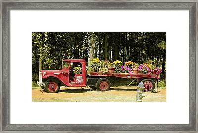 Fredericksburg Texas Framed Print