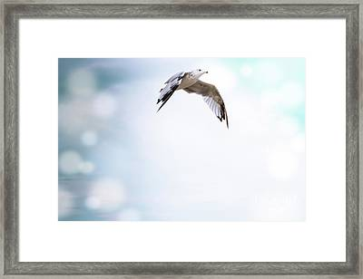 Free As A Bird Framed Print by Colleen Kammerer