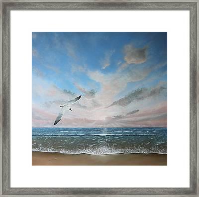 Free As A Bird Framed Print by Paul Newcastle