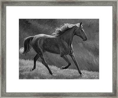 Free - Black And White Framed Print by Lucie Bilodeau