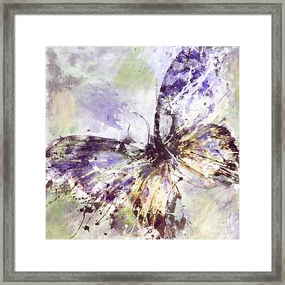 Free Butterfly Framed Print
