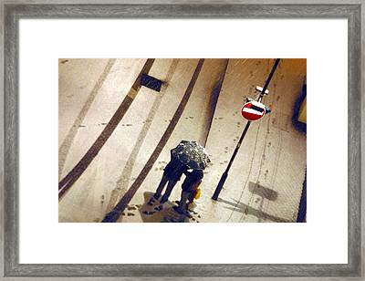 Free Chillin Framed Print by Jez C Self
