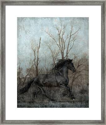Free Framed Print by Jean Hildebrant