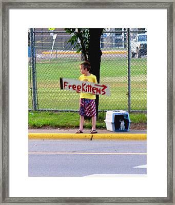 Free Kittens Framed Print
