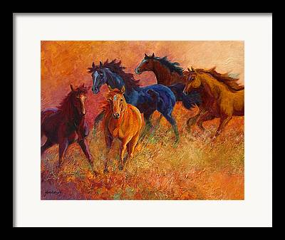 Foal Paintings Framed Prints