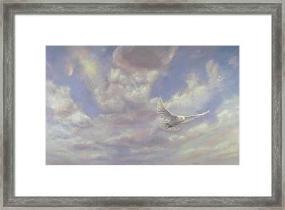 Free Spirit - White Dove Of Hope Framed Print