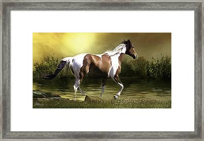Freedom 3 Framed Print by Jacque The Muse Photography