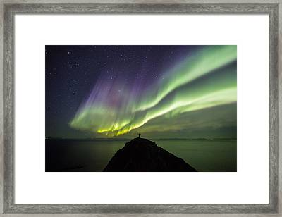 Freedom Framed Print by Alex Conu
