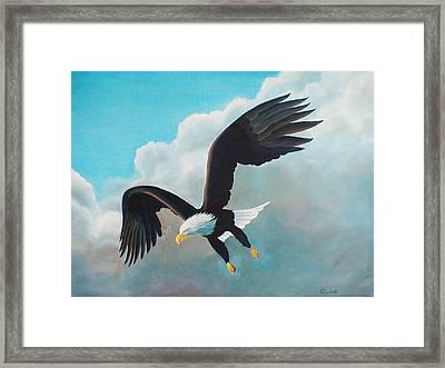 Freedom Eagle Framed Print by Randall Brewer