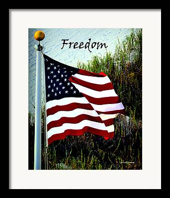 American_flag Framed Prints