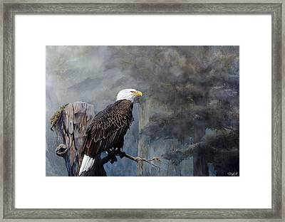 Freedom Haze Framed Print by Steve Goad