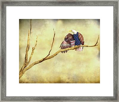 Framed Print featuring the photograph Freedom by James BO Insogna