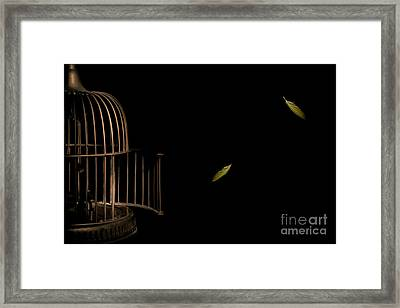Freedom Framed Print by Jan Piller